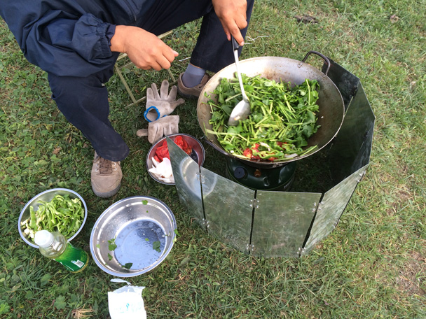 Stir-fried veges - Bayinbuluke Grasslands, Xinjiang, July 2016