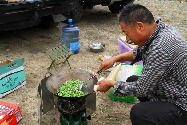 Looks like beans are on the menu today - Bayinbuluke Grasslands, Xinjiang, July 2016