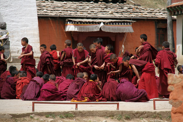 Novice monks debating