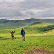 The green rolling hills of the Bashang Grasslands, Hebei Province