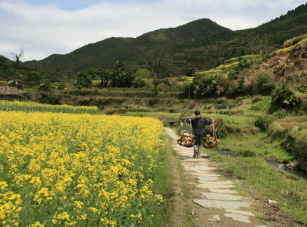 Farmer and fields, Beijing Hikers Wuyuan Sea of Flowers trip, 2010/04/3-5