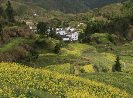 Village in the valley, Beijing Hikers Wuyuan Sea of Flowers trip, 2010/04/3-5