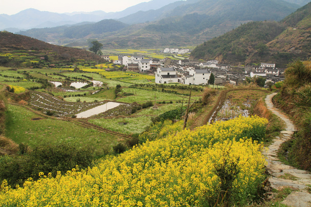We hiked up into the hills behind the village for even better views of the fields - Wuyuan County, Jiangxi Province, 2014/03