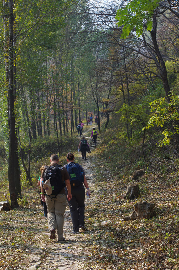 Heading up the trail - Hike Fest 2015
