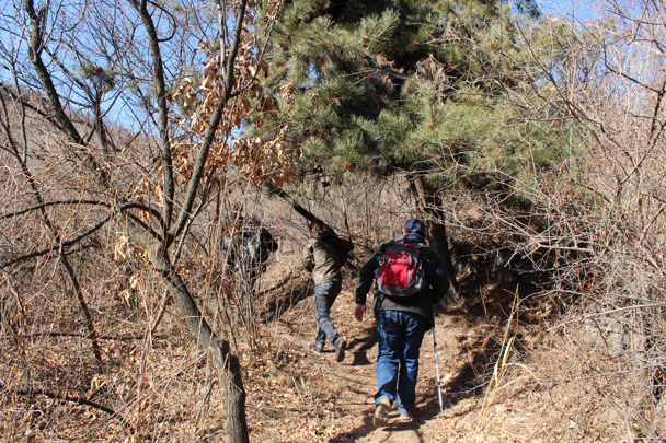 Hiking through forest - Jiankou Big West Great Wall, 2015/02/11