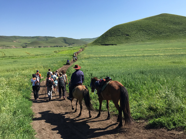 Following dirt trails through the rolling hills - Bashang Grasslands, August 2015