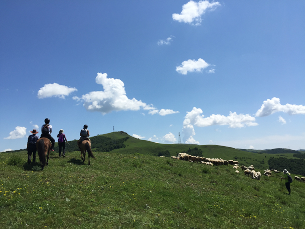 Getting closer to the top - Bashang Grasslands, August 2015