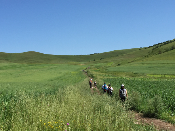 Following a trail up the valley - Bashang Grasslands, August 2015