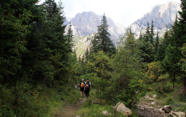 Hiking through the trees - Xiahe, Labrang Monastery, and Zhagana, Gansu Province, September 2015