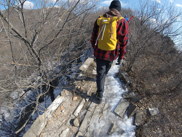 The wall narrows here, and is almost covered by trees and bushes - Jiankou to Mutianyu Great Wall, 2016/02/24