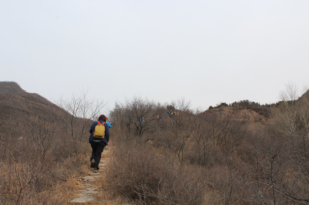 Getting higher on the trail -