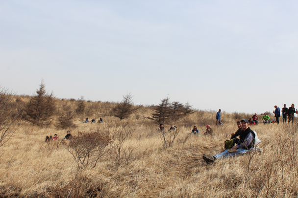 Everybody found a comfortable spot -
