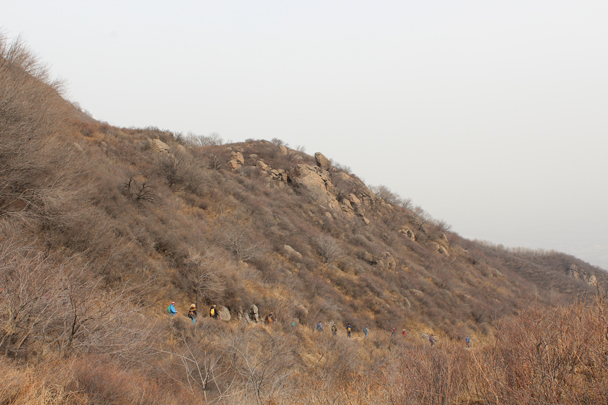We followed the pilgrim's path down into a valley -