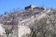 Longquanyu Great Wall, 2016/04/09