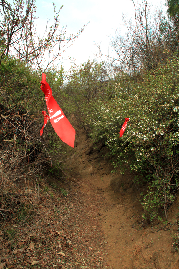 Trail markers on a turn down a valley - Flower Wood to the Ming Tombs hillwalking challenge, 2016/04/16