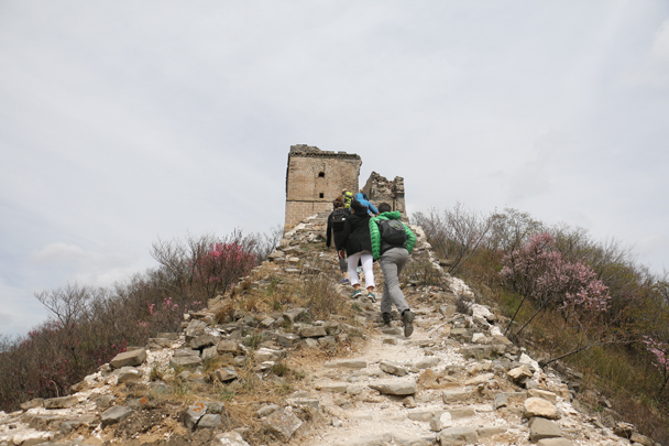 The next part of the walk was on an unrestored section of Great Wall - Stone Valley Great Wall Loop, 2016/4/16
