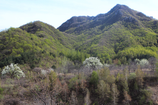 We started the hike in an abandoned park area, walking up through the hills towards Nine-Eyes Tower - Great Wall clean up hike for Earth Day, 2016/4/23