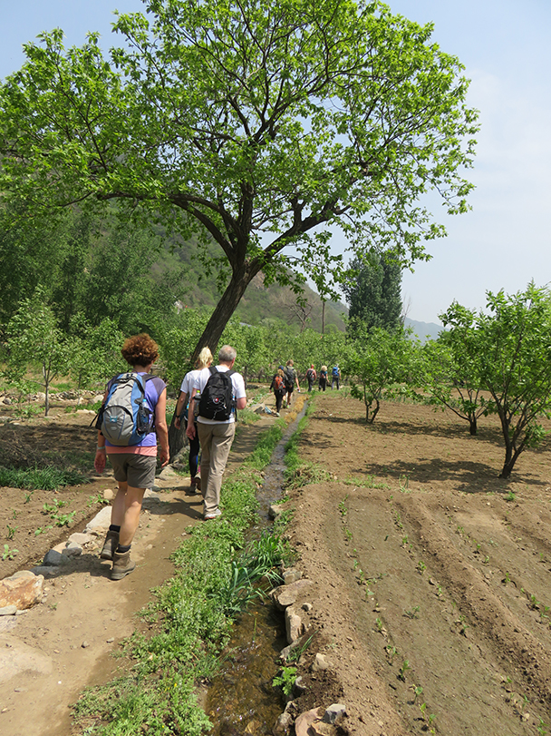 An irrigation channel by fields. Villagers here plant lettuce and spring onions, and there are some persimmon trees - Big Black Mountain to Moss Mountain, 2015/04/30