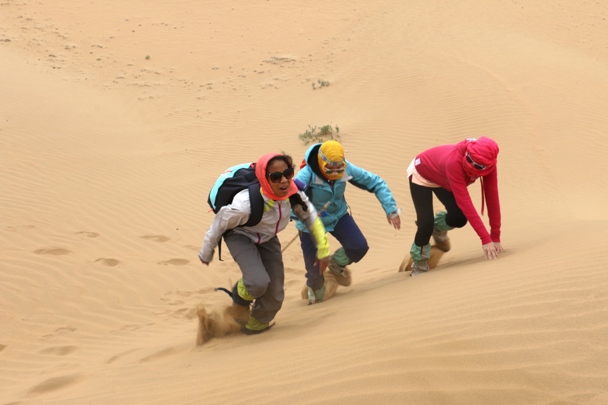 A race to the top of a sand dune - Tengger Desert, May 2016