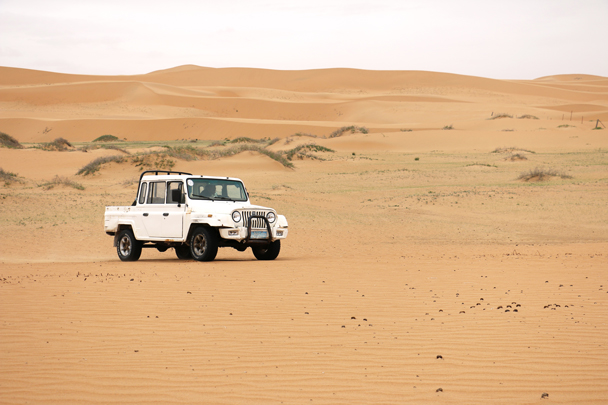 We bumped into a man driving his jeep about - he was looking for his lost camels - Tengger Desert, May 2016