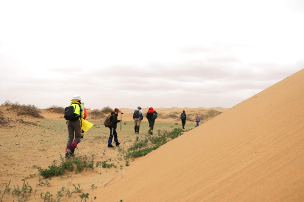 Hiking around the dunes near the lake - Tengger Desert, May 2016