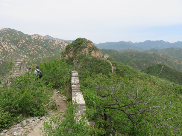 Onto the wild wall (or into, depending on how many plants there are) - Longquanyu Great Wall to the Little West Lake, 2016/05/04