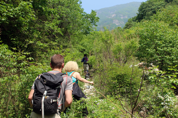 Heading up into a brushy valley - Heituo Mountain, 2016/05/21