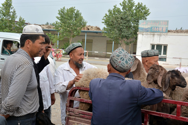 Negotiating the price of sheep at the livestock market - Along the Silk Road from Korla to Kashgar, June 2016