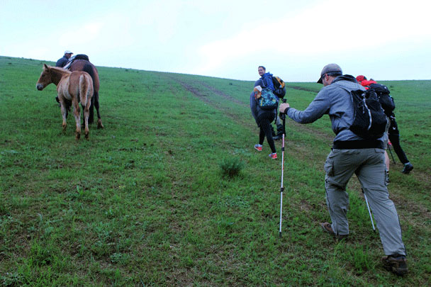 We went for a shorter hike on the last day of the trip – we were a bit sore from the previous day! - Bashang Grasslands trip, July 2016