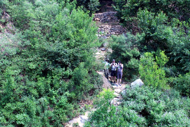 Looking down from the Great Wall at Zhuangdaokou. The hikers below are on the old path that leads through a massive archway in the Great Wall right here - Walled Village to the Little West Lake Great Wall, 2016/07/07