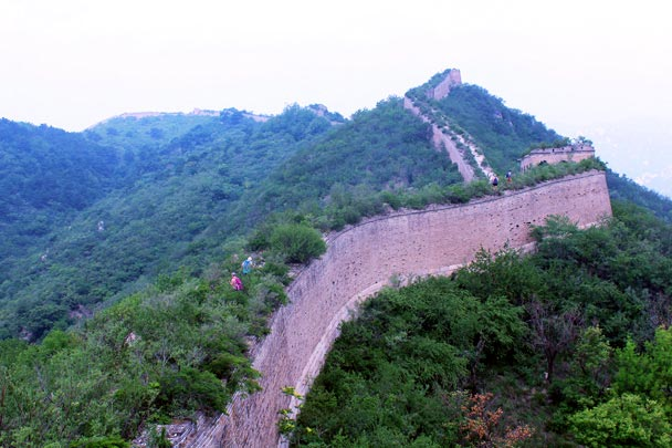 The wall here hasn't been repaired since the Ming Dynasty, and is now well overgrown. The foundation looks strong, but the battlements have all fallen down - Walled Village to the Little West Lake Great Wall, 2016/07/07