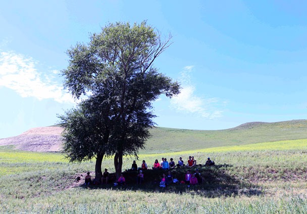 The last session of meditation, in the shade of a tree - Yoga and Meditation at the Bashang Grasslands, August 2016