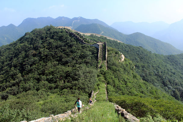 Unrepaired 'wild' Great Wall covered by grass - Switchback Great Wall camping, 2016/08