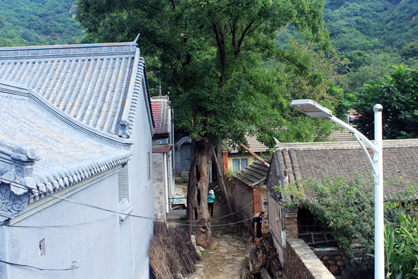 A lane inside the Walled Village - Walled Village to Huanghuacheng Great Wall, 2016/08/24