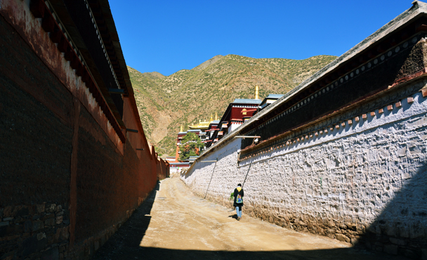 We headed over to check out the temple's school of medicine - Xiahe, Labrang Monastery, and the Zhagana area in southern Gansu, September 2016