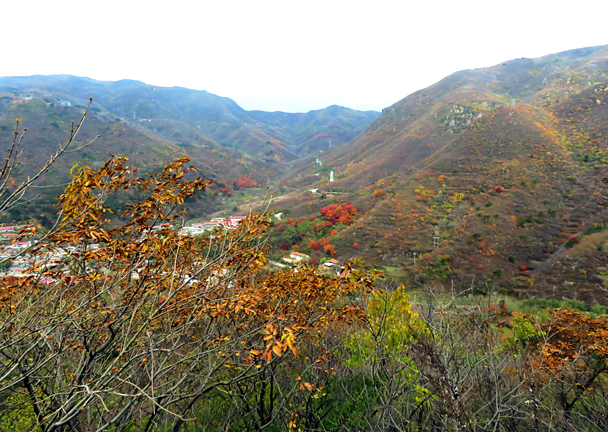 The beautiful colors of autumn - Miaofengshan Super Loop, 2016/10/22