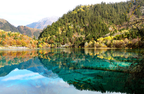 Forest and mountains reflected in the still water - Jiuzhaigou and Huanglong National Parks, Sichuan, 2016/11