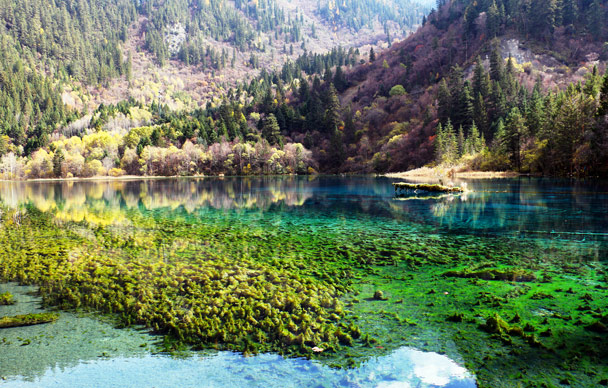 This is Panda Lake. Apparently it's named that because the colours of the lake look like a panda. Hmmm - Jiuzhaigou and Huanglong National Parks, Sichuan, 2016/11