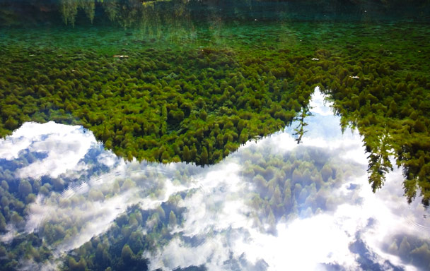 Reflections in Moss Lake - Jiuzhaigou and Huanglong National Parks, Sichuan, 2016/11