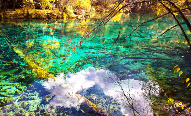 Mirror Lake - Jiuzhaigou and Huanglong National Parks, Sichuan, 2016/11
