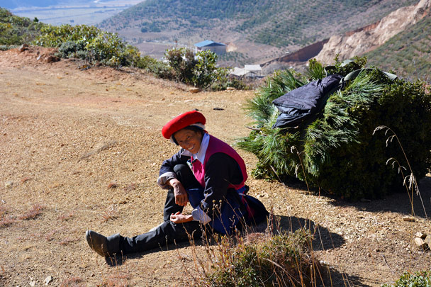 Tibetan lady taking a break from collecting grass - Lijiang and Shangri-La, Yunnan Province, November 2016