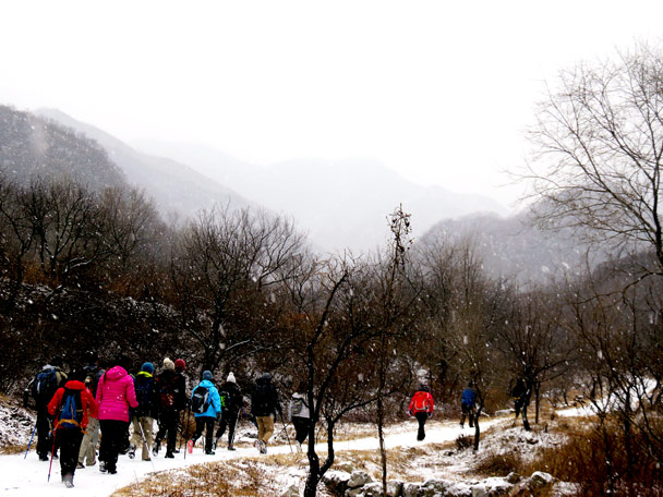 The snow was falling as we hiked up to wall - Stone Valley Great Wall snow hike, 2017/01/07