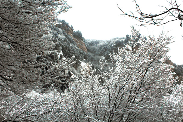 Snow in the trees - Tianmen Mountain Rock Arch, 2017/1/15