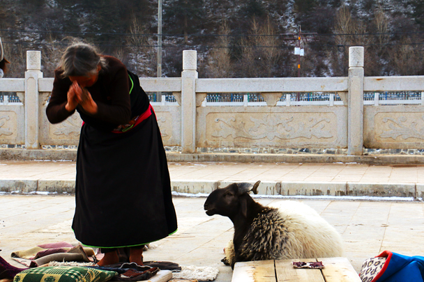 Praying in front of the Grand Sutra Hall - Labrang Monastery and Xiahe, Gansu