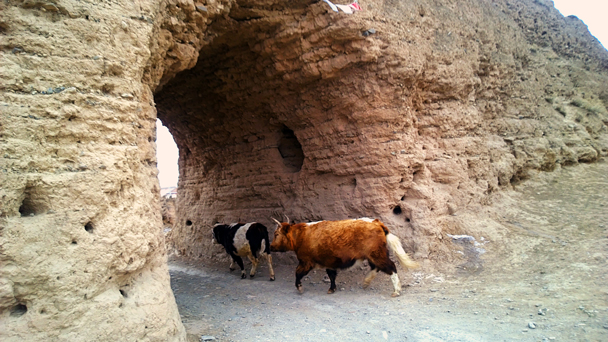 There's a small farming village inside the walls - Labrang Monastery and Xiahe, Gansu