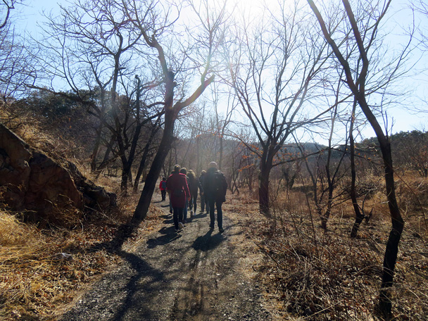 On a farm trail up through the chestnut orchards - Walled Village to the Little West Lake, 2017/3/09