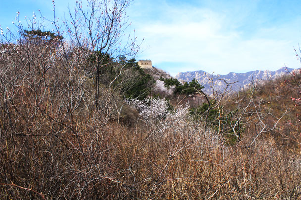 A tower comes into view - Walled Village to Huanghuacheng Great Wall, 2017/4/02