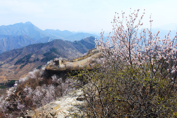 Looking on towards Huanghuacheng - Walled Village to Huanghuacheng Great Wall, 2017/4/02