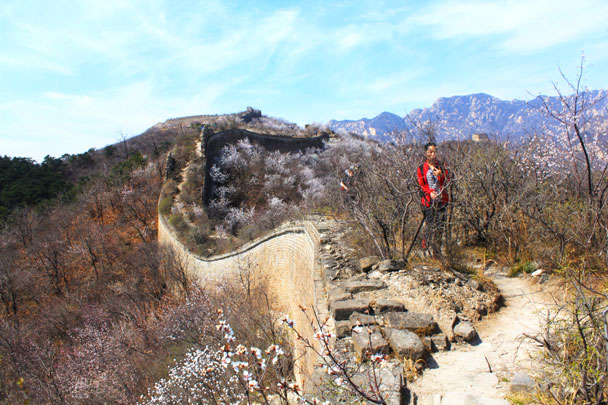 Coming down the wall - Walled Village to Huanghuacheng Great Wall, 2017/4/02