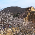 Walled Village to Huanghuacheng Great Wall, 2017/4/02